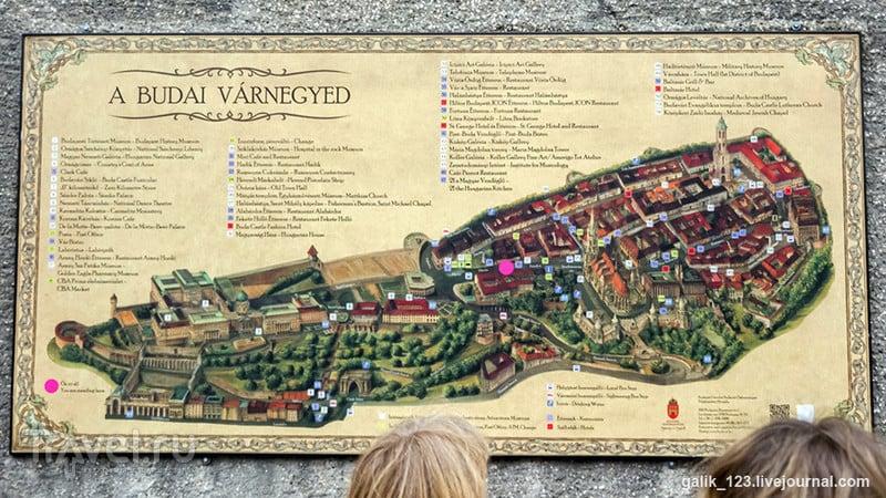 Прогулка по Будайскому холму / Венгрия