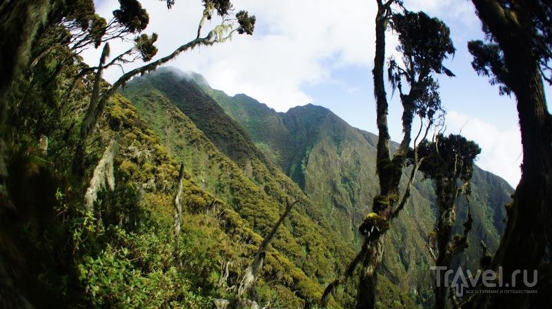 Вирунга. Mt Sabyinyo - Вулкан на границе трех стран / Фото из Республики Конго
