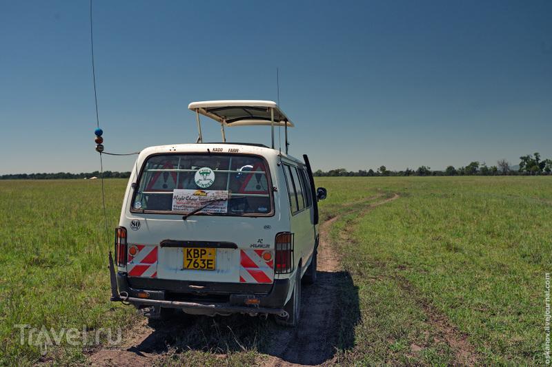 Масаи-Мара. Африканское приключение / Фото из Кении