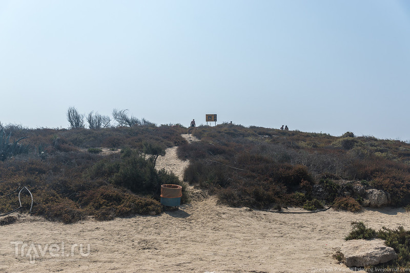 Пляж Нисси в Айя-Напе. Действительно ли он так хорош? / Кипр