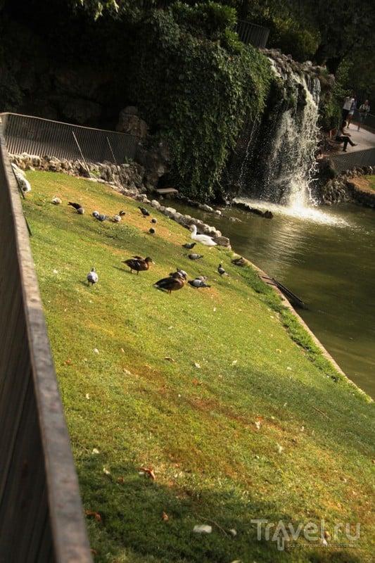 Приятный отдых в Мадриде: парк Буэн Ретиро / Испания