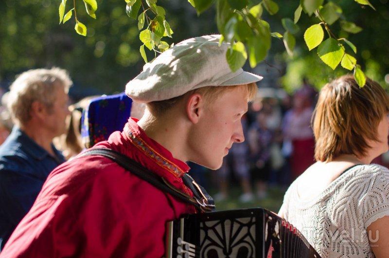 Без баяниста праздник - не праздник / Фото из России
