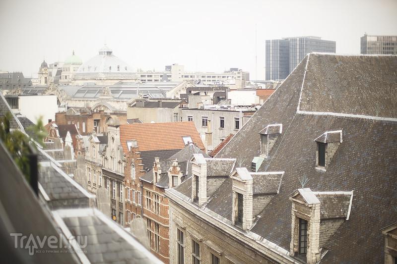Брюссель. Гран-Плас, Flowertime и Rocco Forte / Бельгия