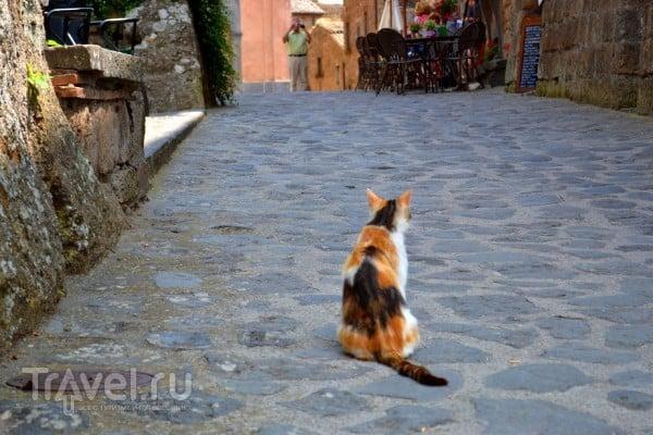 Мертвый город - Civita di Bagnoregio и немного ночной Венеции / Италия