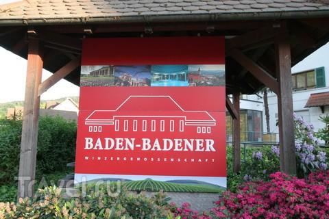 Баденское бургундское. Разного цвета / Германия