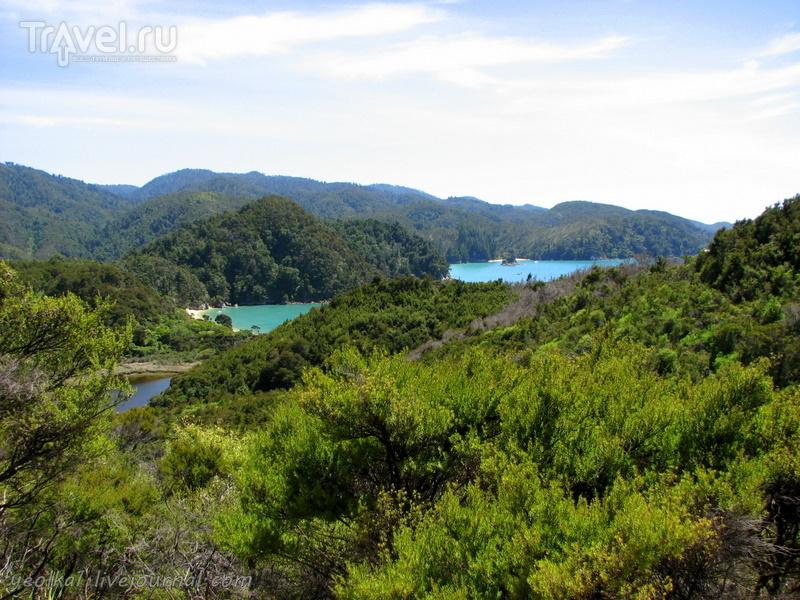 В стране антиподов. На севере Южного острова. Заповедник Абель Тасман. Из бухты в бухту / Новая Зеландия