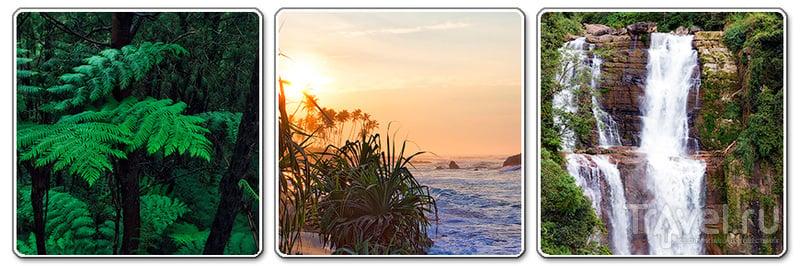 Шри-Ланка. Вопросы читателей / Шри-Ланка