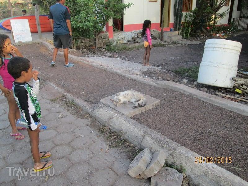 Галапагосы. Остров Сан-Кристобаль. Город Пуэрто-Бакерисо-Морено / Эквадор