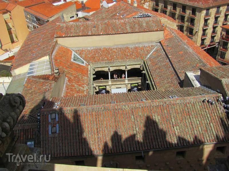 Саламанка: Собор, крыши, университет / Испания