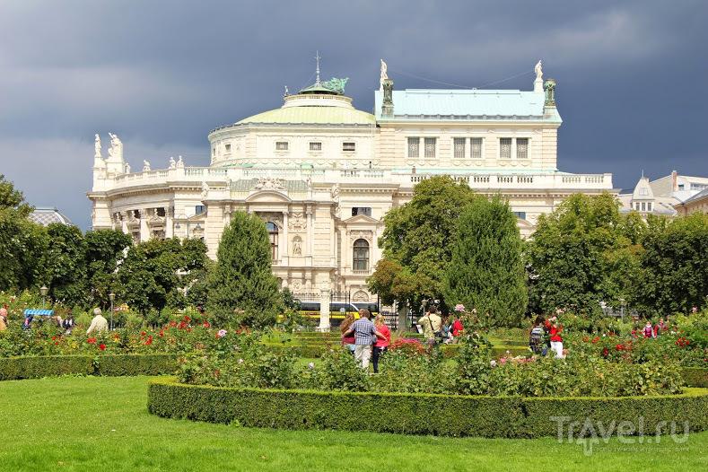 Вена в августе / Австрия