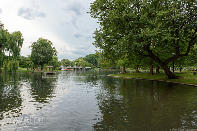 Парки Бостона: Boston Public Garden / Фото из США