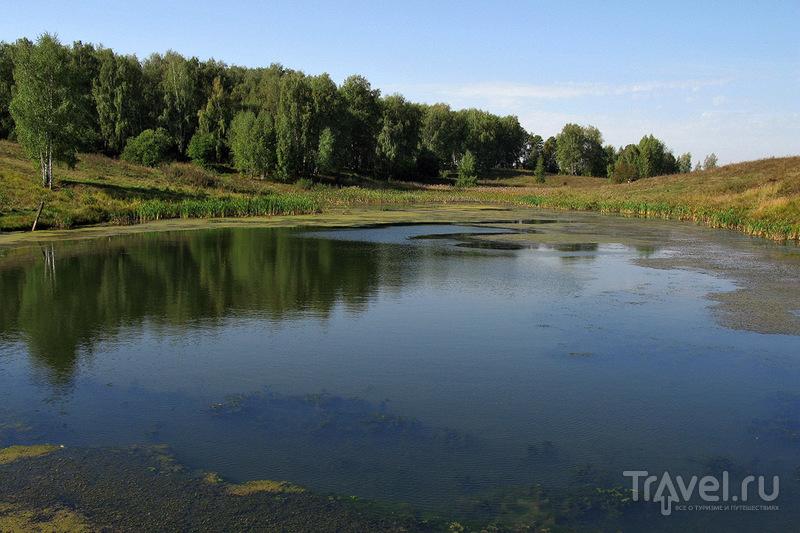 Пешком по Подмосковью. От Пурлово до водопада в Дулебино / Фото из России