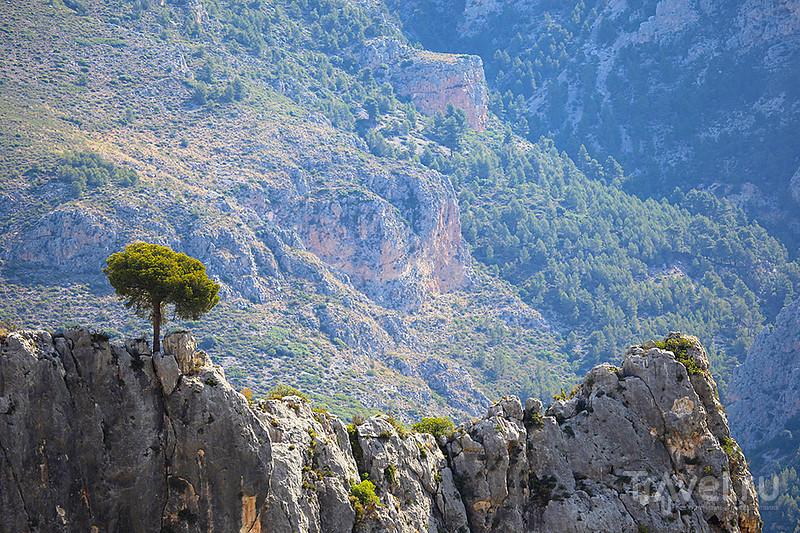 Гуадалест. Испания / Фото из Испании