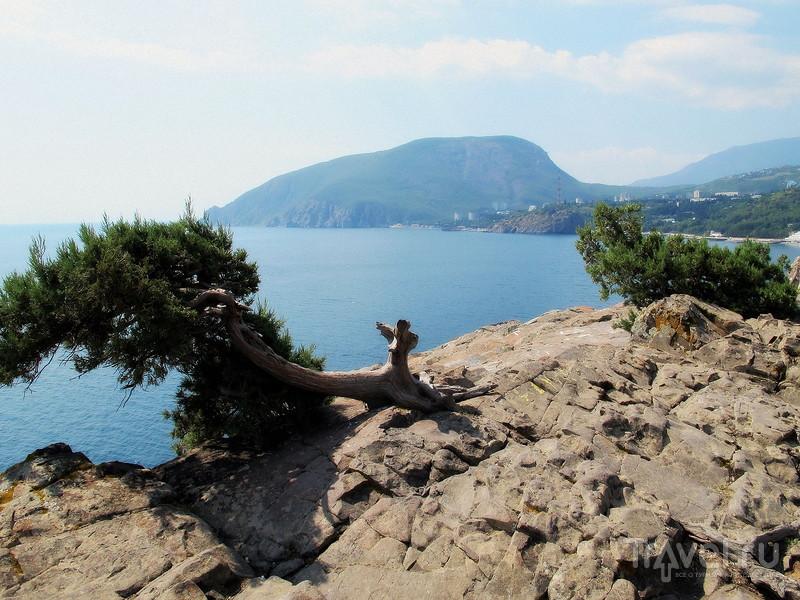 Крым, мыс Плака, дача княгини Гагариной / Фото из России