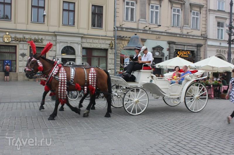 Путешествие русских в Польшу / Польша