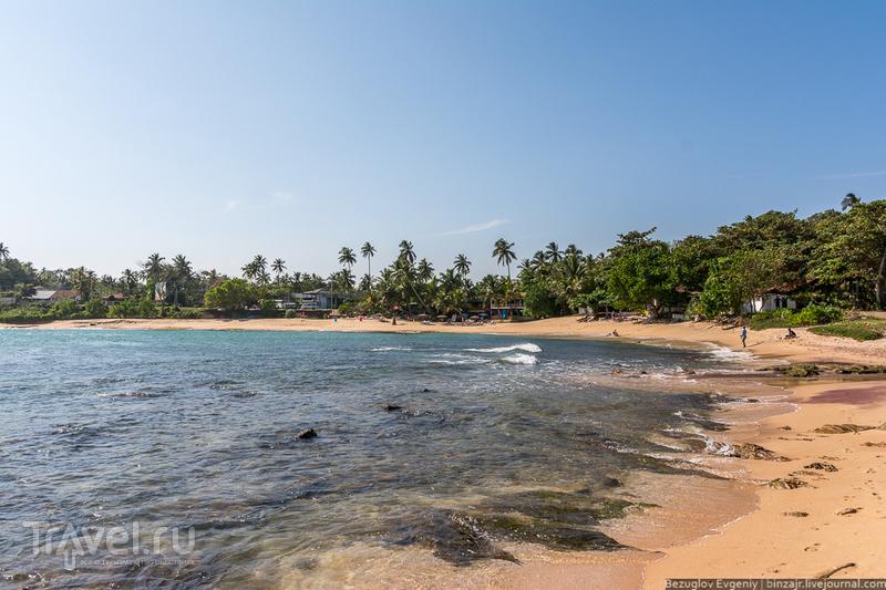 Шри-Ланка. Тангалле / Фото со Шри-Ланки