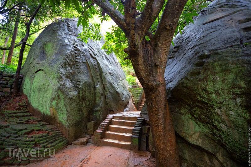Сигирия. Игра престолов по шри-ланкийски / Фото со Шри-Ланки
