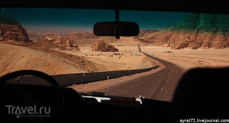 Сафари на Синае / Египет