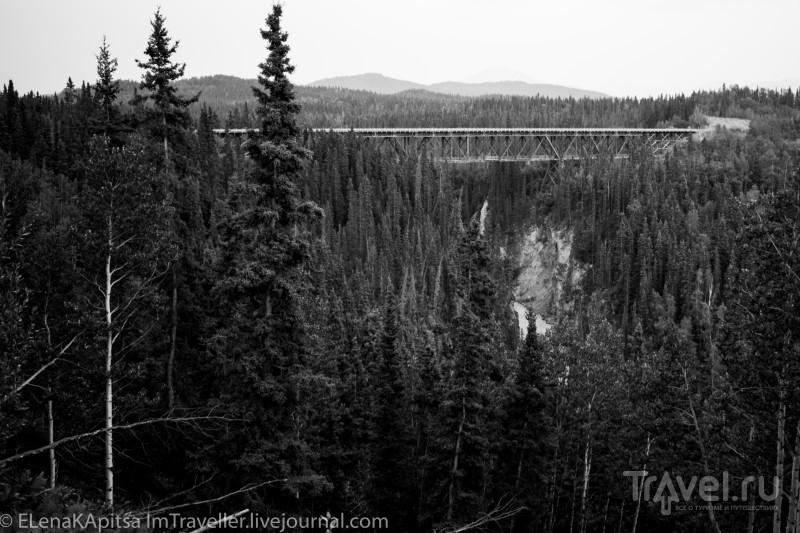В одиночку по Аляске. McCarthy / Фото из США