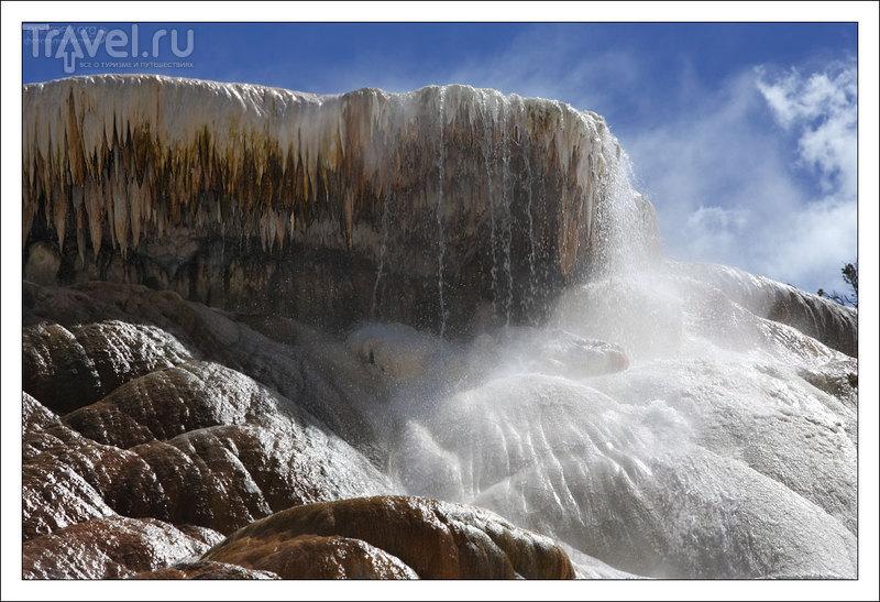 Йеллоустоун: фотосафари / Фото из США