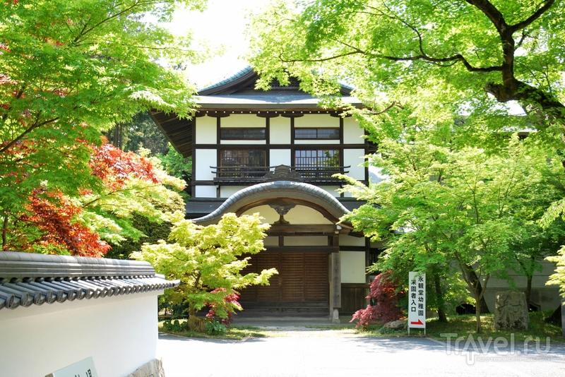 Киото: прогулка по Философскому Пути, красные клёны и розовая сакура / Япония