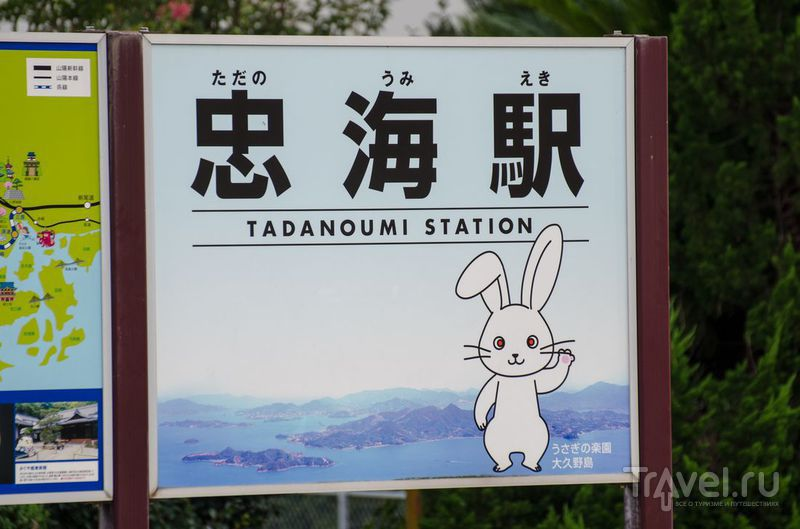 Окуносима: Заячий остров / Фото из Японии