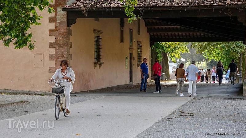 Крепостная стена Лукки / Италия