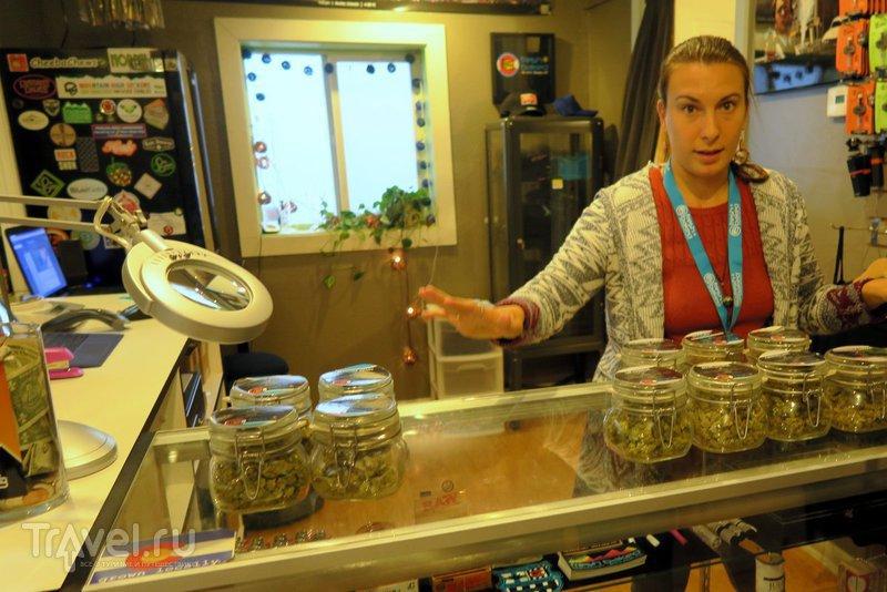 Колорадо: Легальная торговля марихуаной / США