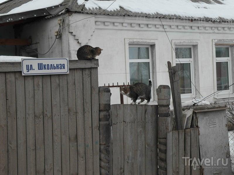 Рыбное - Мытищи по-рязански / Россия
