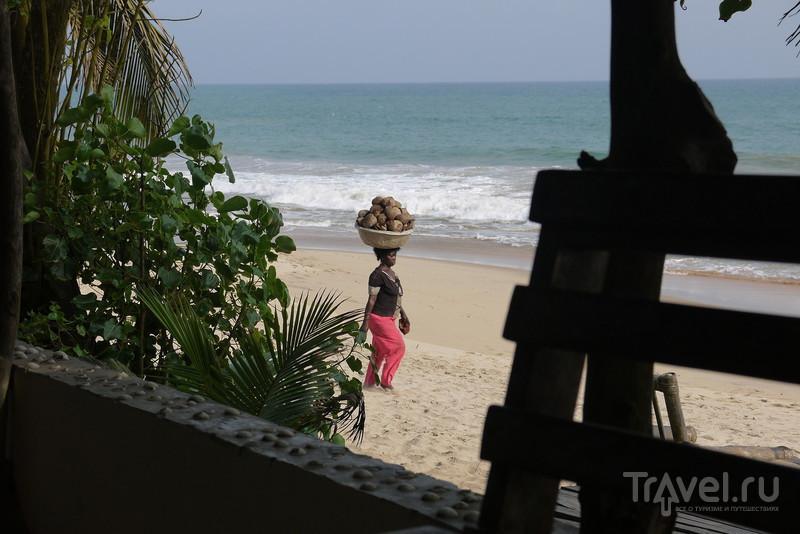 Гана – зачем и как? / Гана