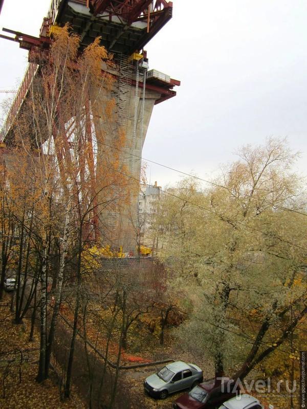Золотая осень на Канонерском острове / Россия