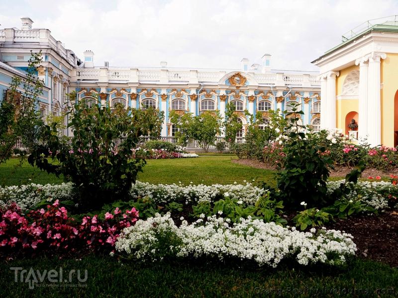 St. Petersburg. Царское Село / Фото из России