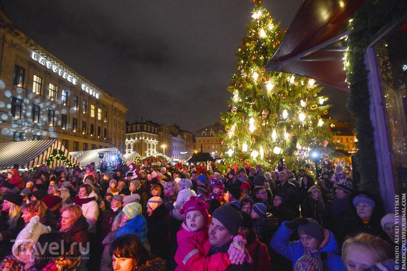 Открытие рождественского базара в Риге 2015 / Фото из Латвии