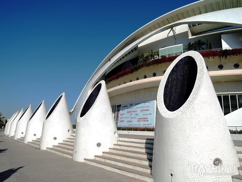 Прекрасная Валенсия. Город искусств и наук / Фото из Испании