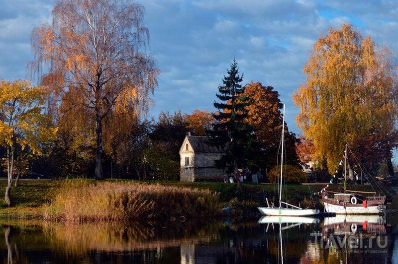 Природа Латвии / Фото из Латвии
