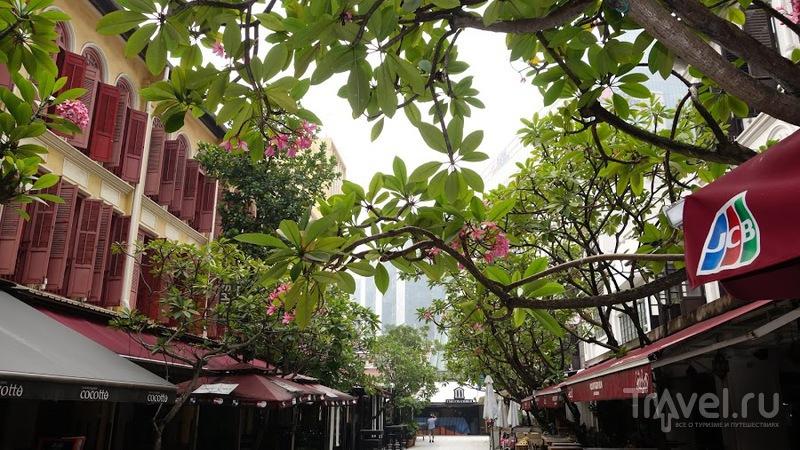 Мой Сингапур / Фото из Сингапура