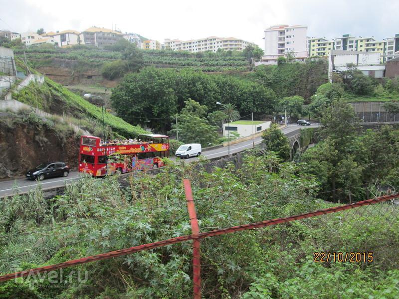 Португалия. Мадейра. Экскурсионный автобус / Португалия