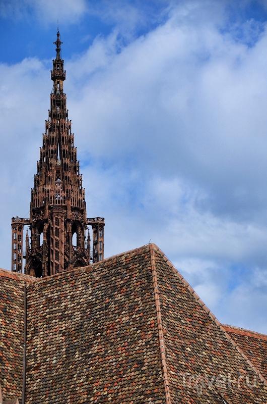 Нотр-Дам-де-Страсбур, Страсбург, Франция / Фото из Франции