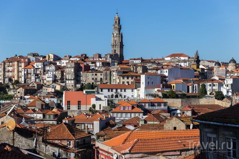 Порту днем и ночью перед рождеством / Фото из Португалии