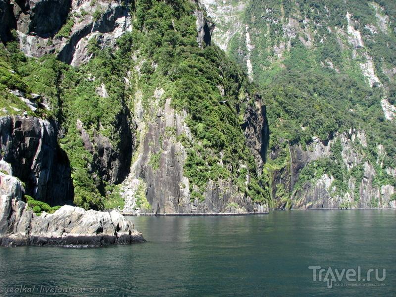 В стране антиподов. Фьорд Милфорд Саунд - одно из чудес света / Фото из Новой Зеландии
