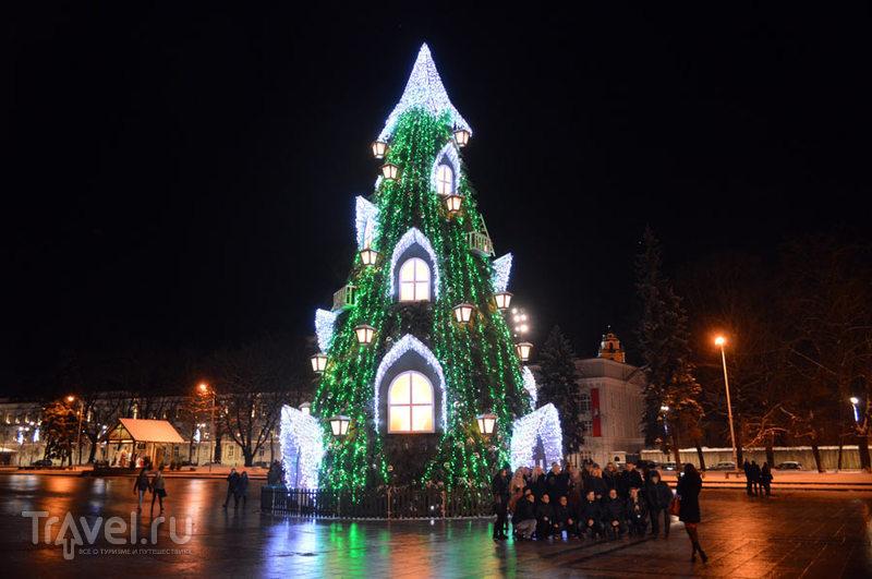 Новогодняя елка в Вильнюсе и не только... / Литва