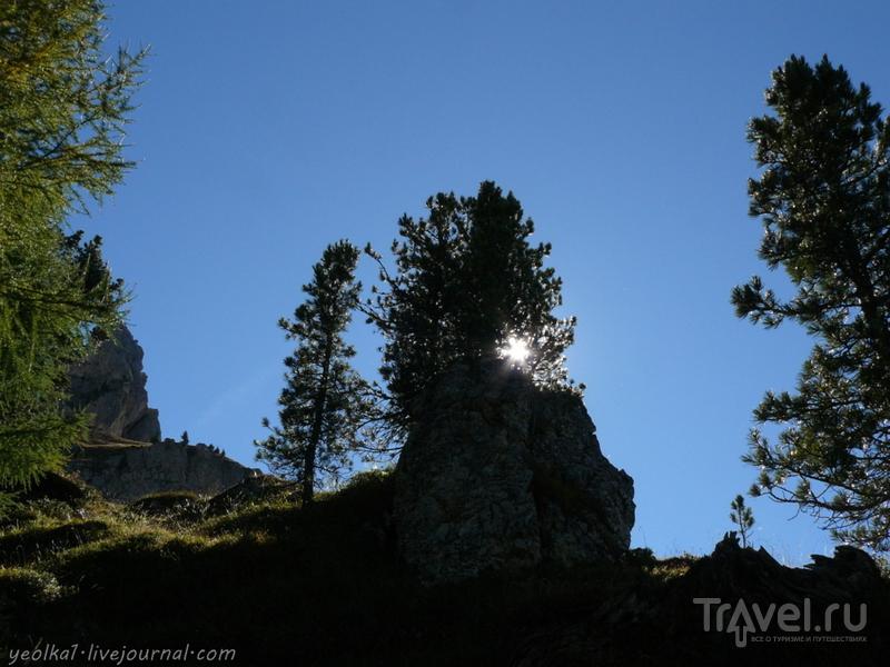 Девять дней в Доломитах. Большое кольцо вокруг Сассолунго / Фото из Италии