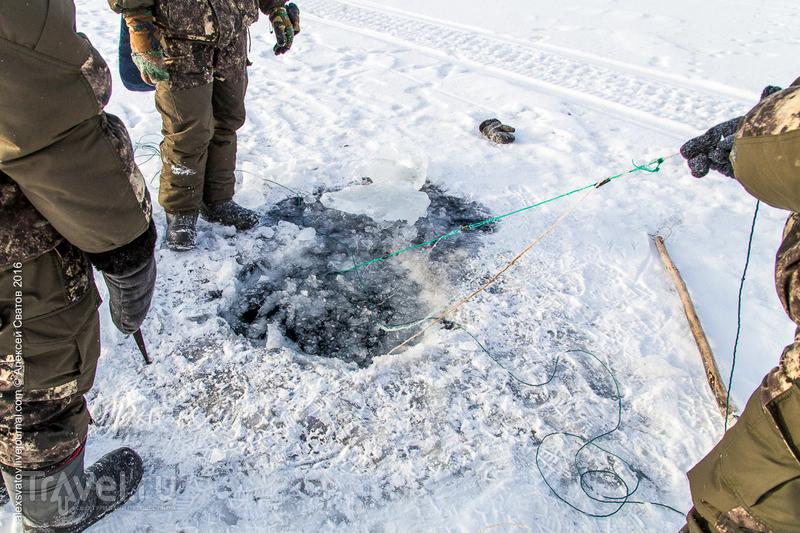 Как мы браконьерские сети снимали. Заповедное Подлеморье / Россия