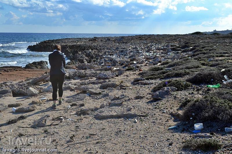 Кипрская Карпасия - рай для ослов и туристов-романтиков / Фото с Кипра
