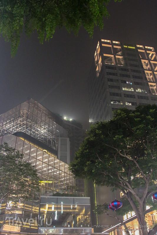 Из Сингапура с подробностями: от вечера до вечера / Сингапур