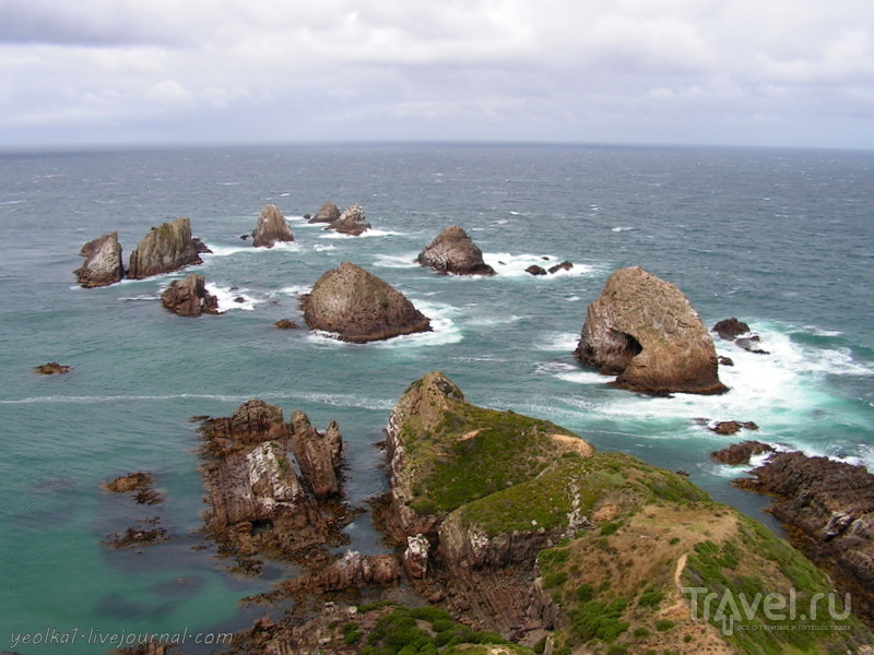 В стране антиподов. Кэтлинс. Суровое побережье Южного океана / Фото из Новой Зеландии
