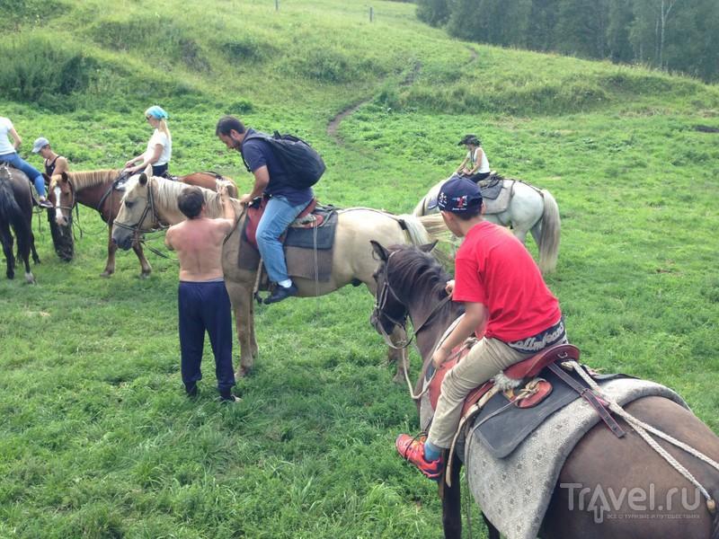 Отдых на Алтае в августе 2014 / Россия