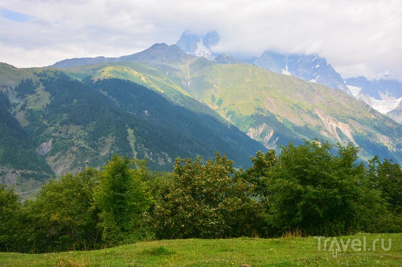 Отпуск по-грузински. Из Местии в Жабеши / Фото из Грузии