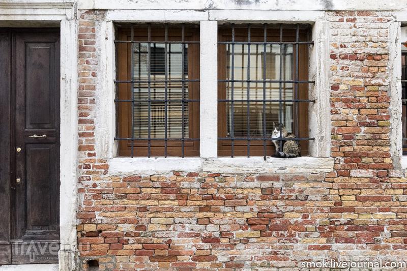 Немного хмурая, но все равно прекрасная Венеция / Фото из Италии