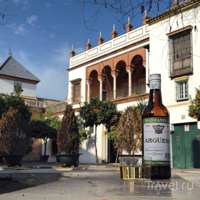 Январская Севилья - путевой дневник / Испания